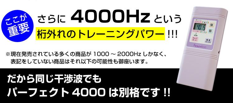 パーフェクト4000